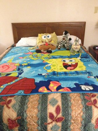 Island Drive Lodge: My son's bed. :)