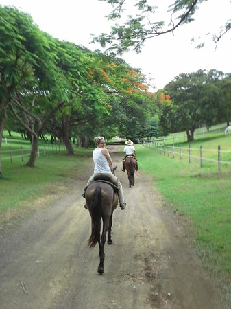 Painted Pony Guest Ranch - Costa Rica : Riding through Costa Rica