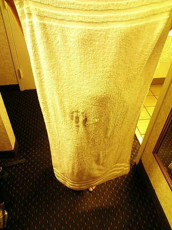 Days Inn Conneaut: Rag towel with see through worn spot