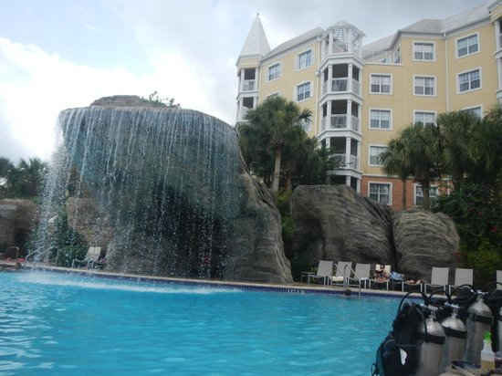 Hilton Grand Vacations at SeaWorld: Waterfall into the pool