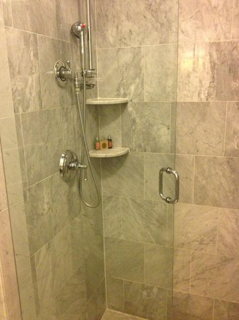 Royal Park Hotel: Shower Stall