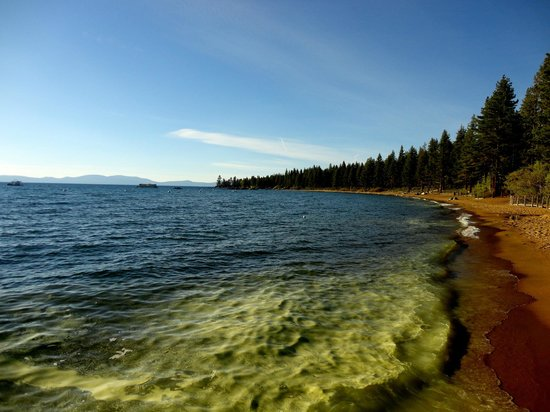 Marriott's Timber Lodge: Lake Tahoe