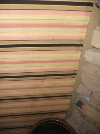 Quality Inn U0026 Suites Gatlinburg: Stains On The Wall.