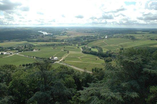 École de langues CSur de France : Countryside at Sancerre's Doorstep