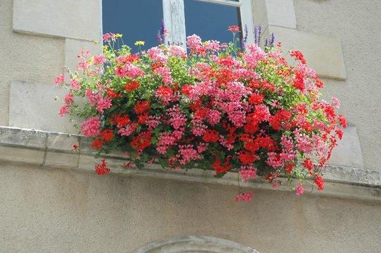 École de langues CSur de France : Bountiful Bouquet