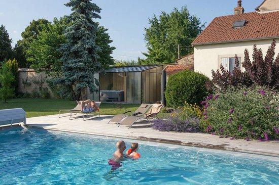 Le Clos de l'Aigue : Vue de la piscine et jardin