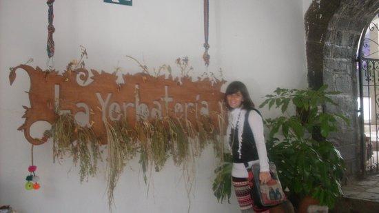 Museo de Plantas Sagradas, Magicas y Medicinales: La Yerbatería