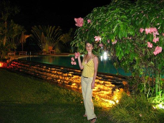 Railay Princess Resort and Spa: Вечерний вид на пруд.