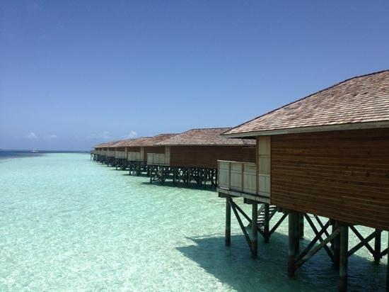 Vilamendhoo Island Resort & Spa: view from JWV 312