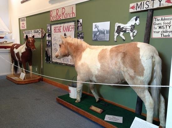 Museum of Chincoteague: Misty & Stormy