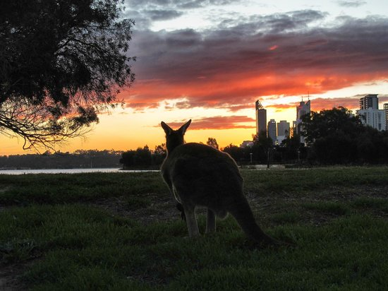 Perths La Casa Rosa Bed and Breakfast: View of Perth at Sunset from the island near the B & B