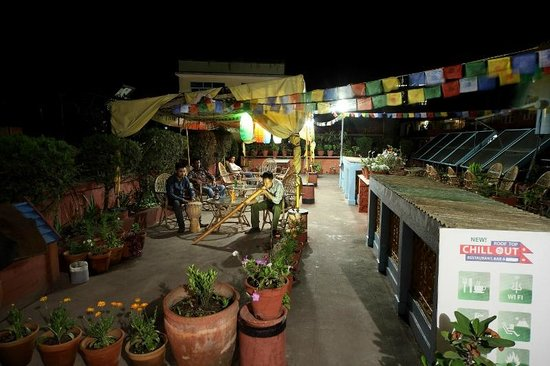 Chillout Resort Pvt. Ltd: Roof Top for Musical healing