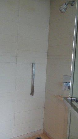 Hyatt Amritsar: bathroom