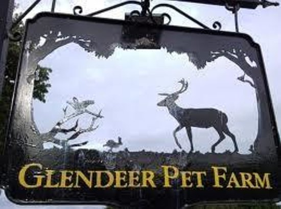 Athlone, Irlanda: Glendeer pet farm
