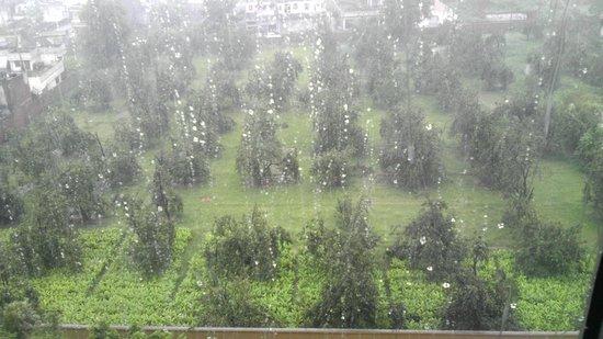Hyatt Amritsar: 1610 view from room