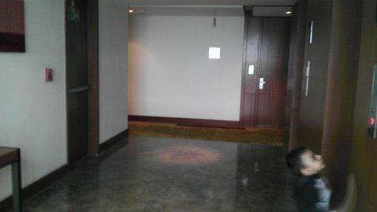 Hyatt Amritsar : way to lobby