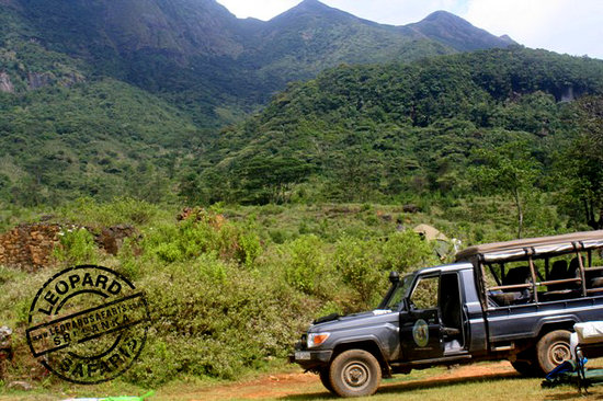 Leopard Safaris Camp Knuckles: jeep