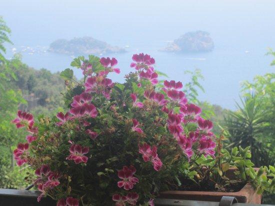 Ristorante La Rosa: Panorama dalla terrazza