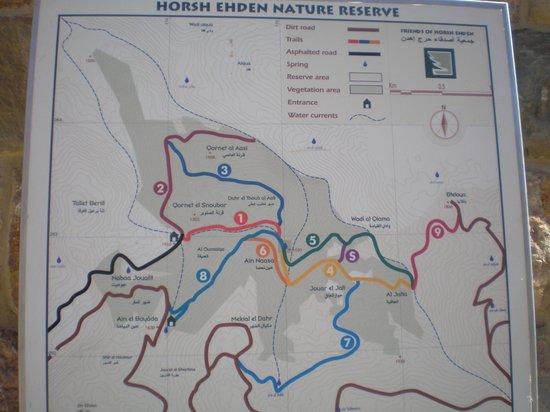 Horsh Ehden Nature Reserve : Wanderstrecke im Nature Reserve