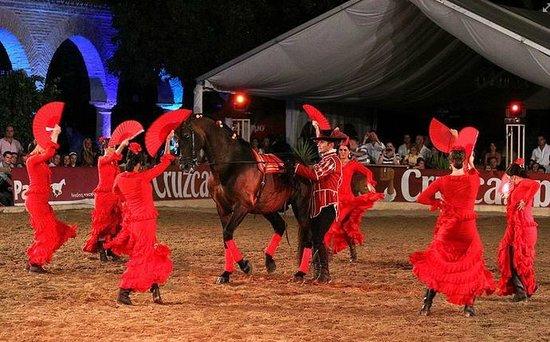 Espectáculo Ecuestre Pasión y Duende del Caballo Andaluz: Foto