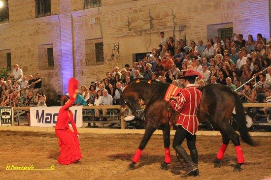 Espectaculo Pasion y Duende del Caballo Andaluz : Flamenco