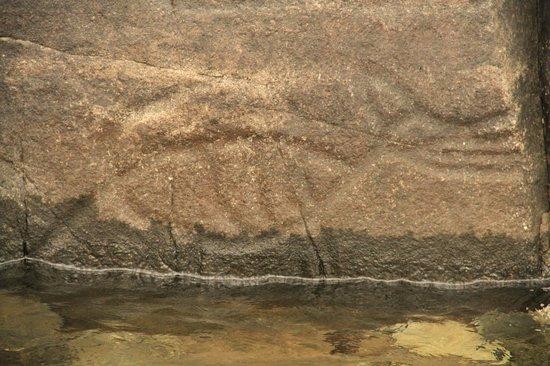 Petroglyphs at Sproat Lake
