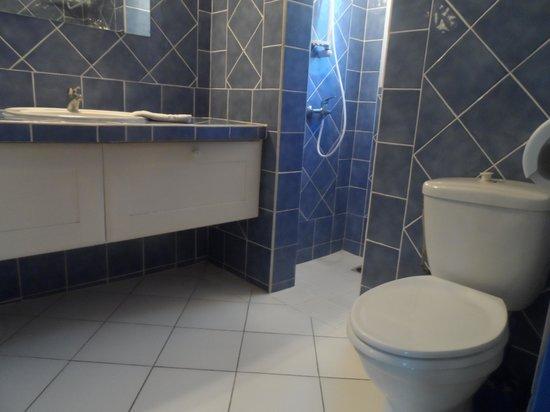 Fleurs des Iles: Shower room
