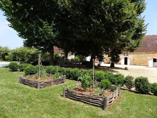 Le Moulin des Fumades : vue du jardin