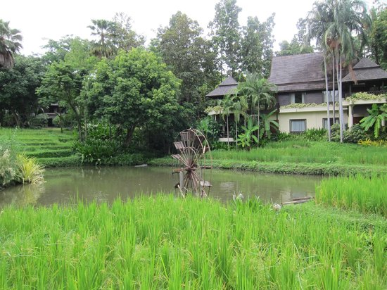 Lana Thai Villa: Grounds at the Four Seasons