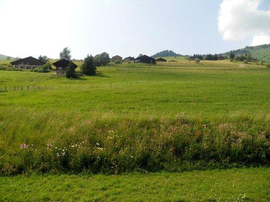Les Chalets de Celine: vue de notre chambre à l'arrière , nord