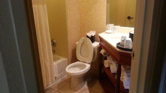 Hampton Inn Memphis-Poplar : bathroom