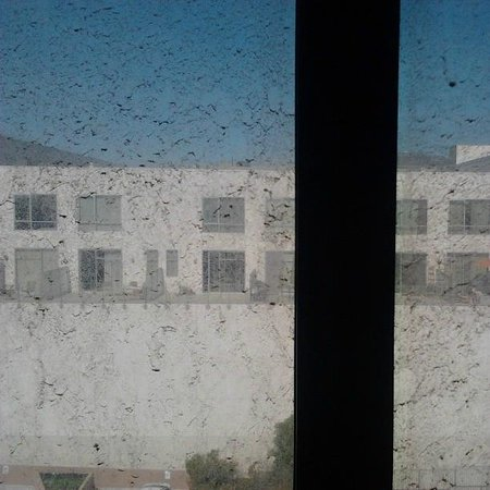 Crowne Plaza Los Angeles Harbor Hotel: Windows need cleaning. I think all rooms are like this.