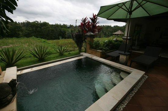 Villa Semana: Private pool and view on rice field