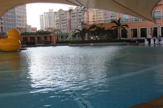 โรงแรม เดอะ เวนิส เซินเจิ้น: Hotel pool