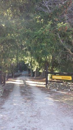Waiorau Homestead: The driveway entrance