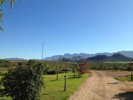 Marbrin Olive Farm