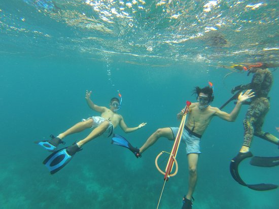 Puerto Rico Private Snorkeling Tours