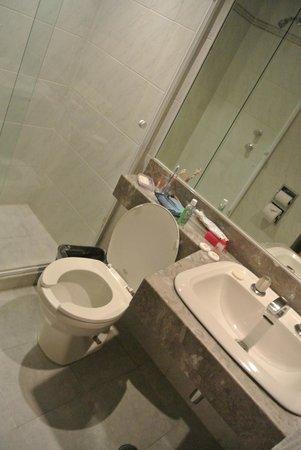 Hotel Gillow : Bathroom