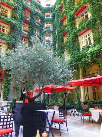 La cour jardin du plaza ath n e picture of la cour for Restaurant ile de france avec jardin