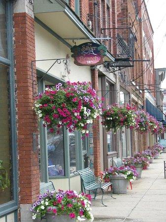 Harbor Perk: Historic Bridge Street