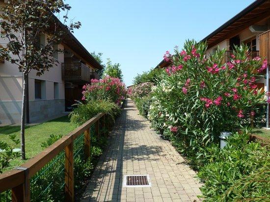 Green Village Resort: Udendørs