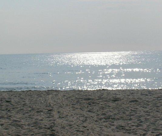 Camping Molino a Fuoco: Sulla spiaggia i Vada ( LI )