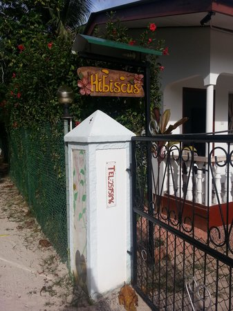 Pension Hibiscus: Entrance