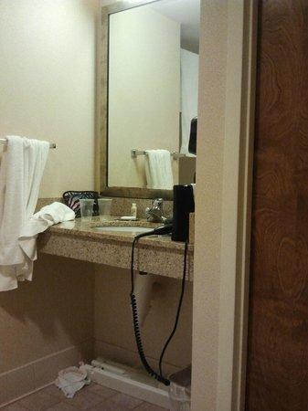 Holiday Inn Boxborough (I-495 Exit 28): bathroom