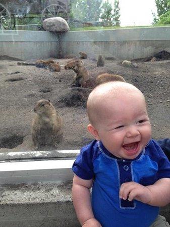 Red River Zoo: enjoying the zoo