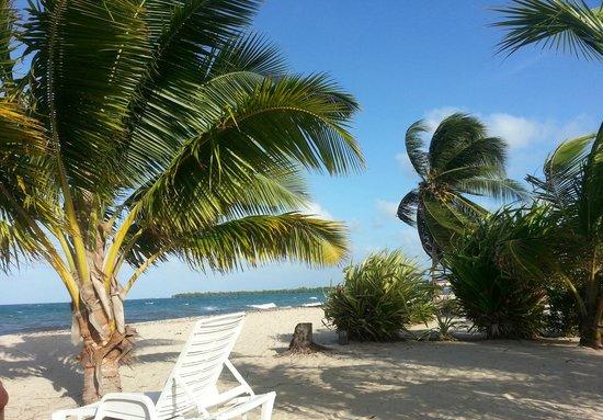 Seaspray Hotel: Private Beach area