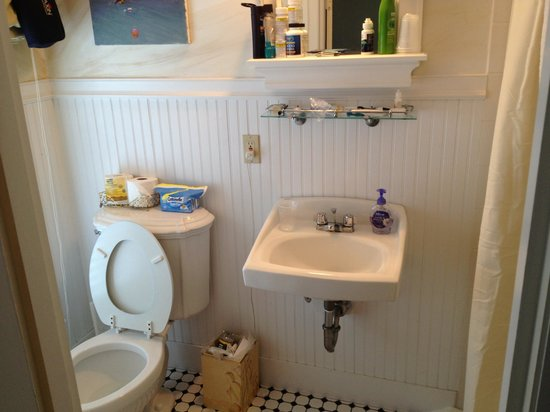 Prince Albert Guest House: Roomy bathroom