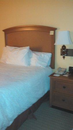 Hampton Inn Tropicana: bed