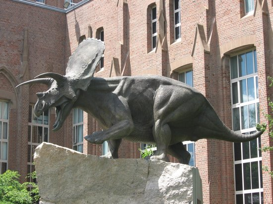 Yale Peabody Museum of Natural History: Entrance