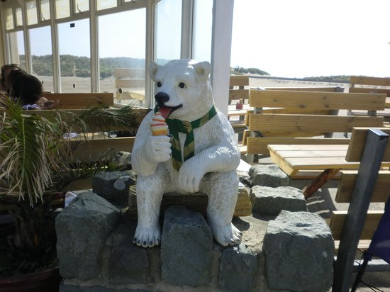 Lawrenny Lodge: cold bear